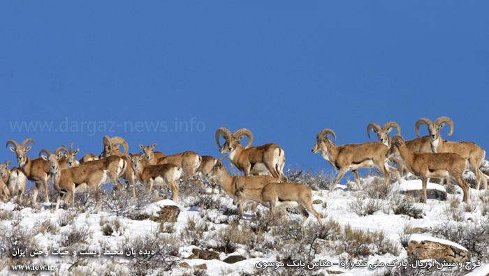 چهلمیر درگز - پارک ملی تندوره