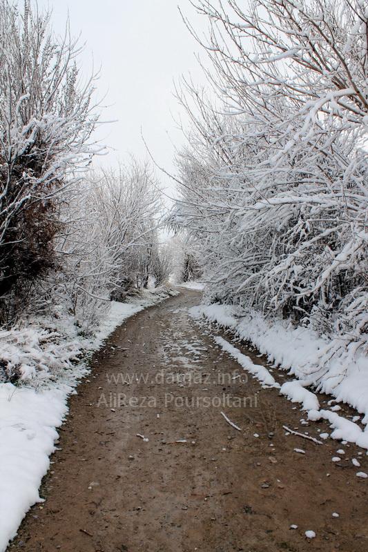تصاویری از شهرستان درگز